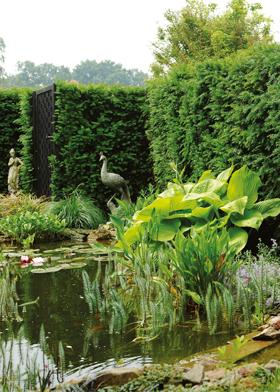 Stadtgärten privatsphäre und die raumsuggestion